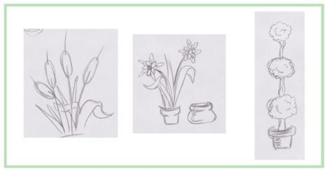 plant20sketches_d