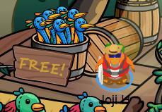 free item2